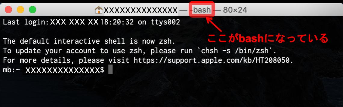 bashの状態のターミナル